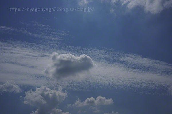 2021-09-15 そら 雲